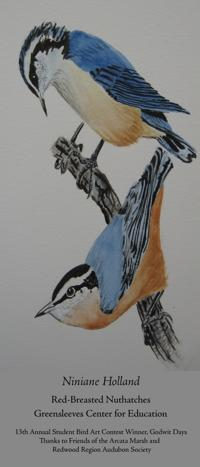 "Niniane Holland - ""Red-Breasted Nuthatches"""